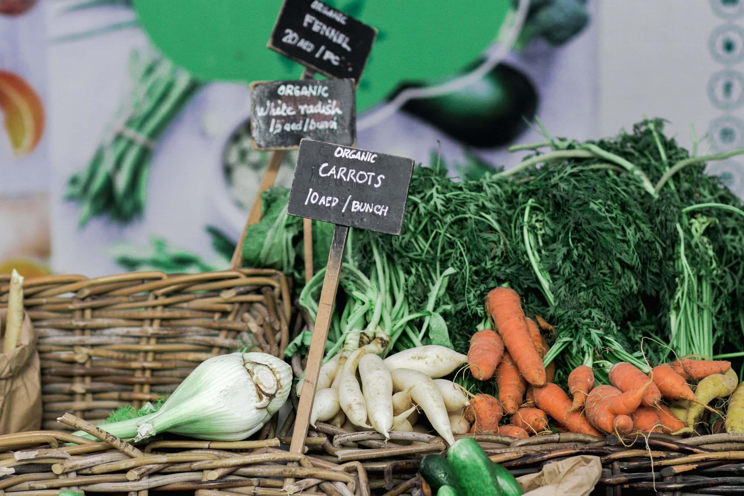 coronavirus and vegan food attitudes