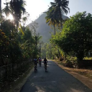 vegan cycle india veganuary