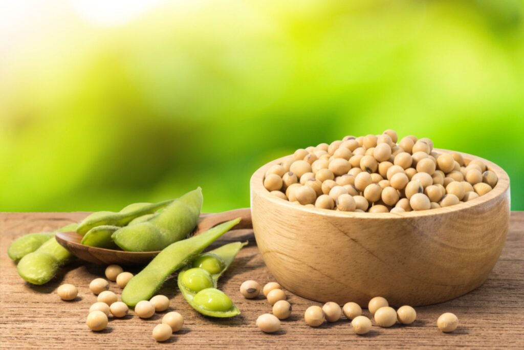how to cook soybeans