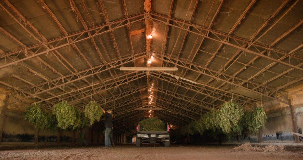 farm transformation