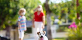 pets pandemic