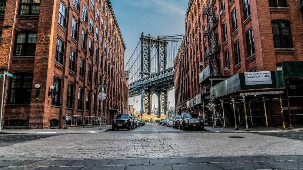new york city vegan