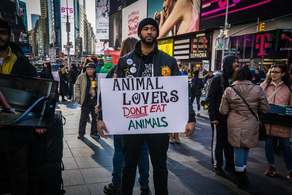 things non vegans say