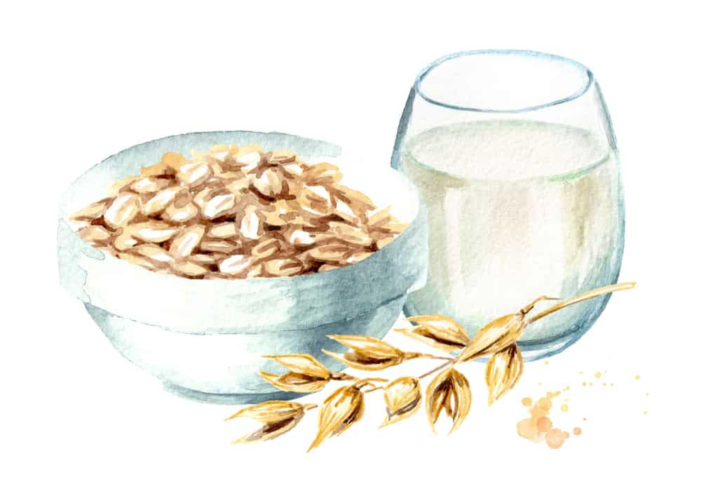 best protein powder uk