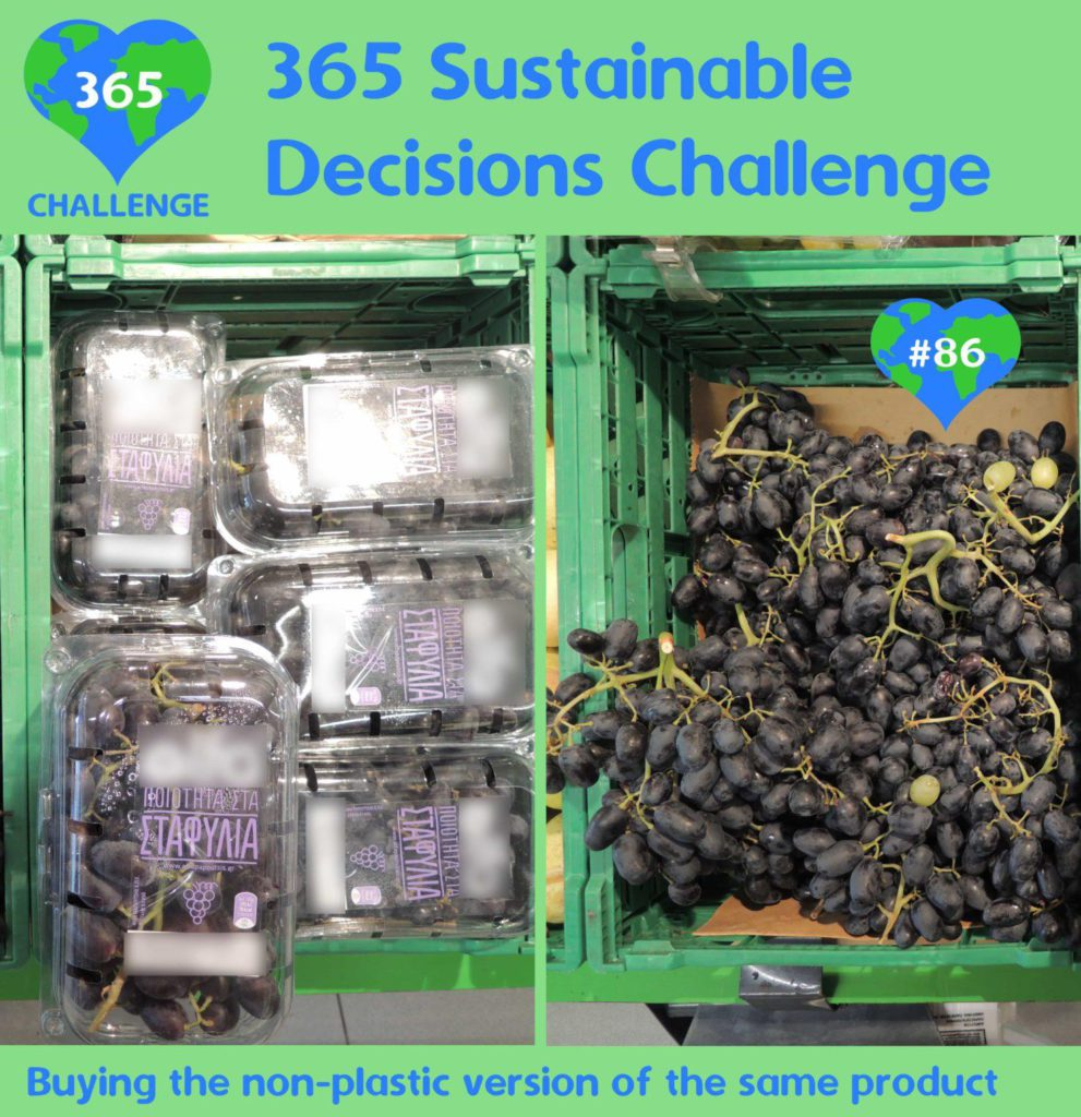sustainable decisions eu