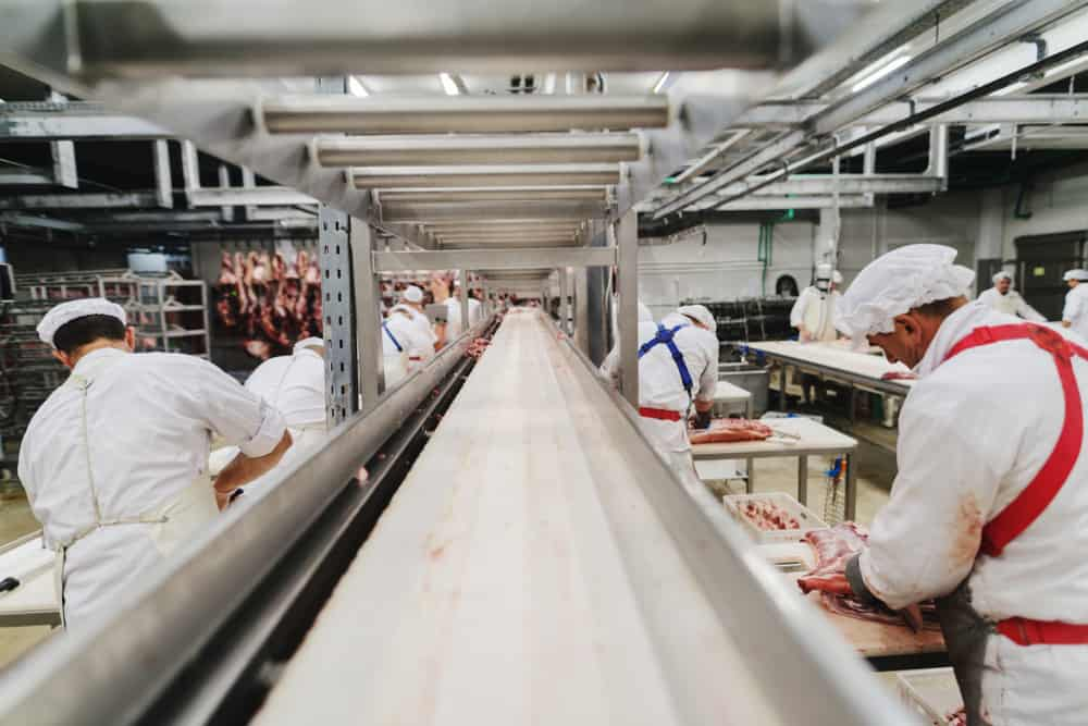 meat food safety standards