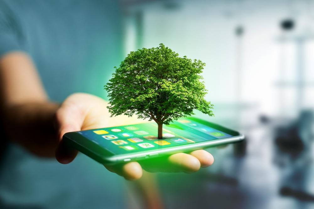 reforestation technology