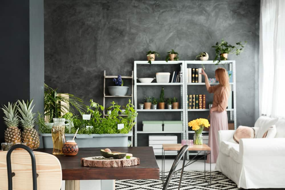 veganize your home