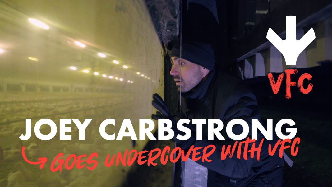 joey carbstrong