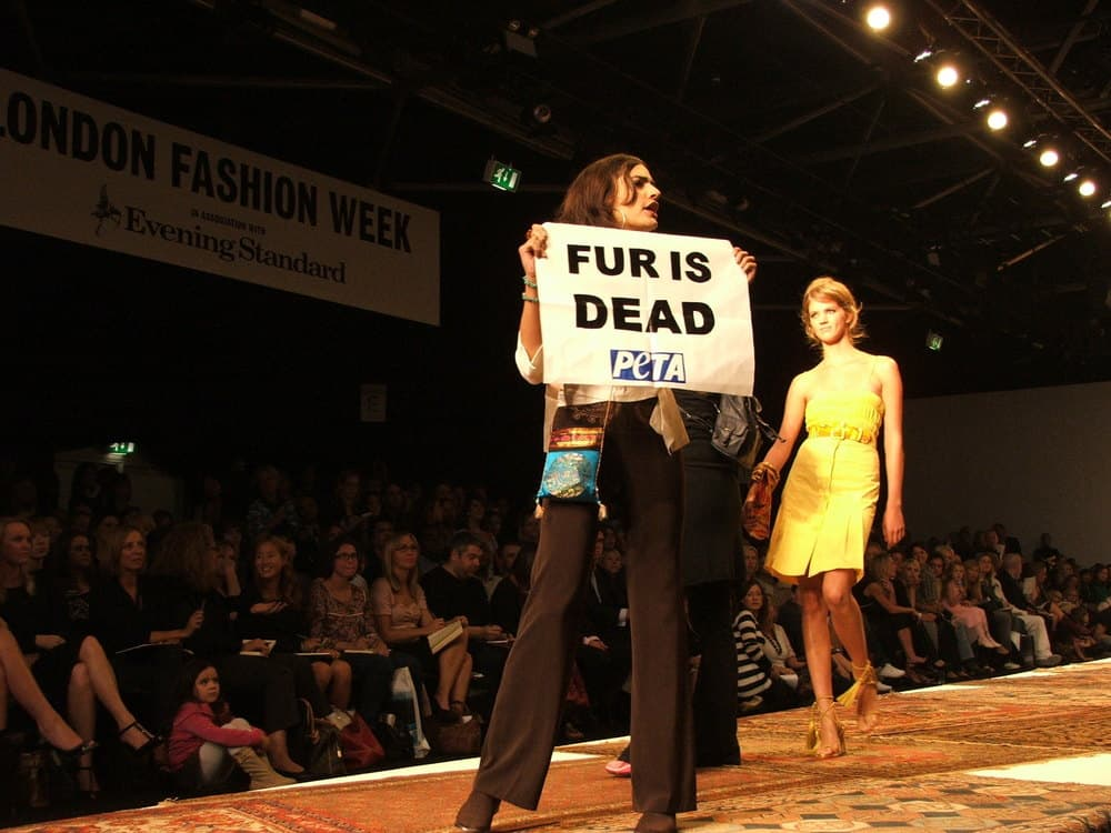 animal rights fashion industry