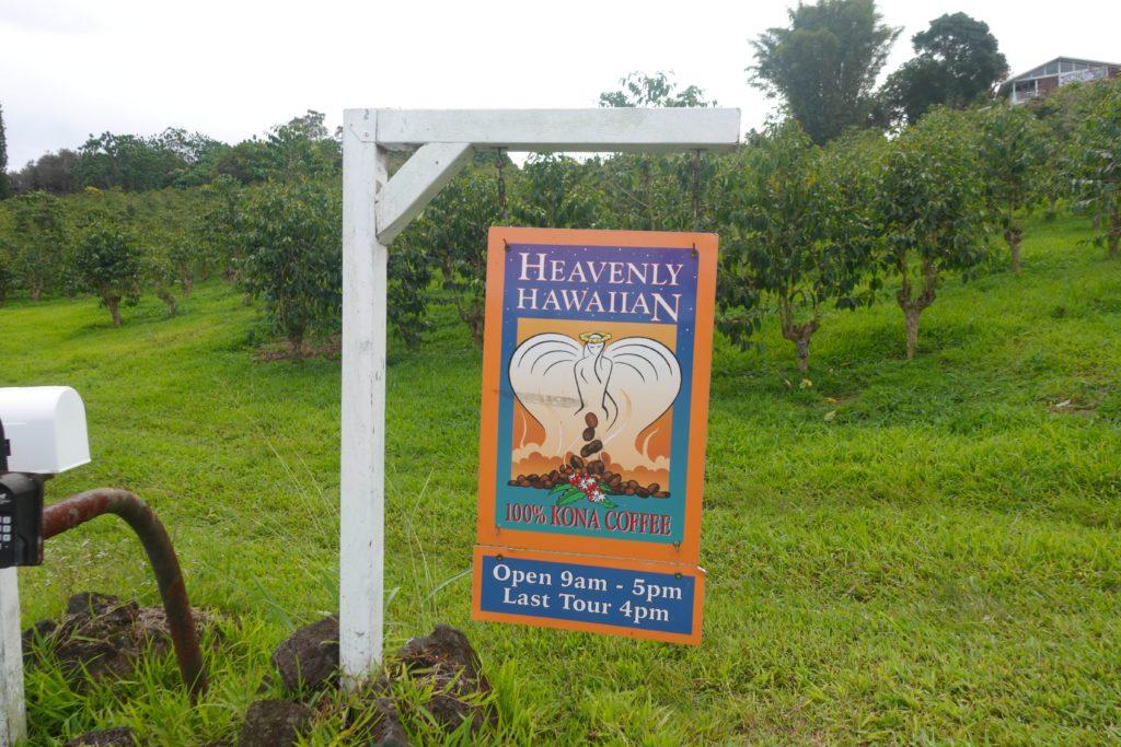 heavenly hawaiian kona coffee farm