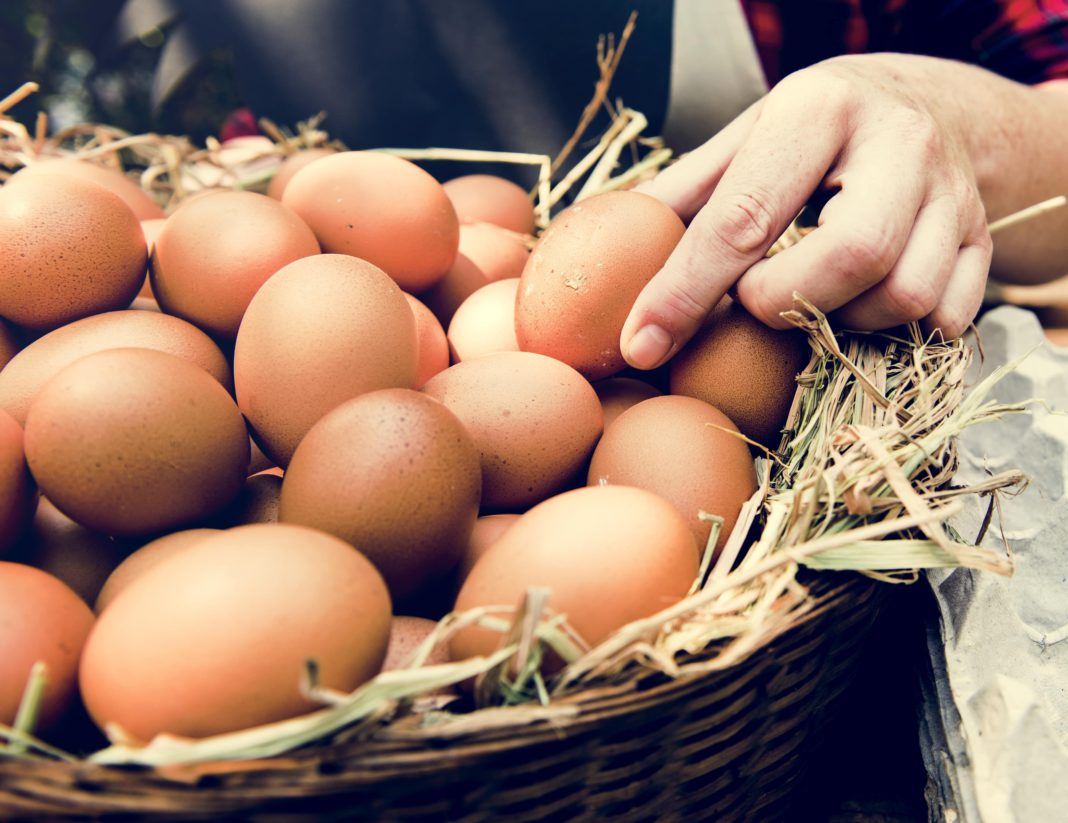 Do vegans eat eggs?