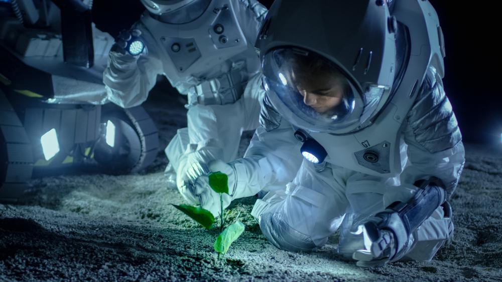 mars plant life
