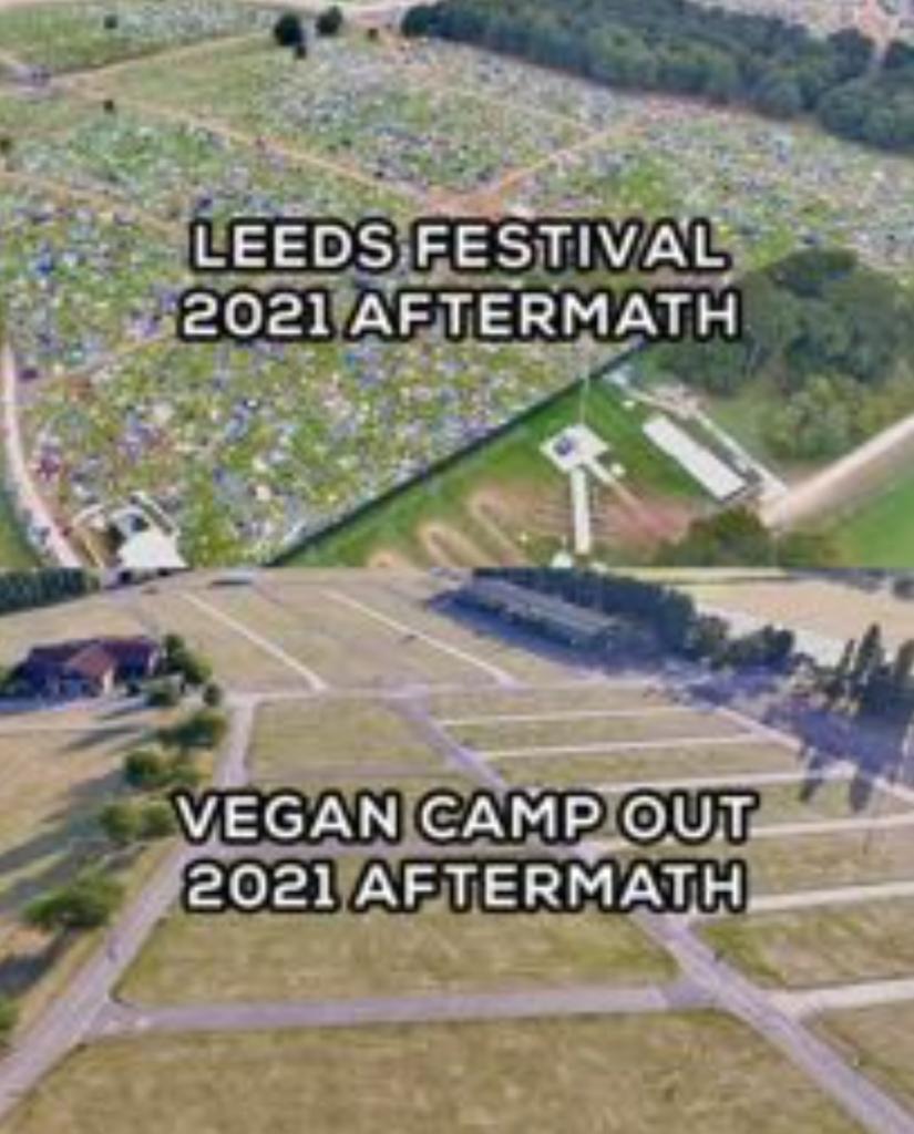 Vegan Campout Aftermath